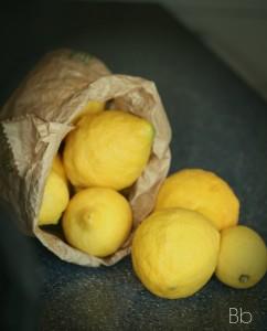 limoni - il sole in cucina con firma